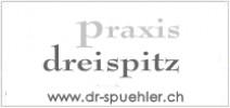 dr spuehler ch